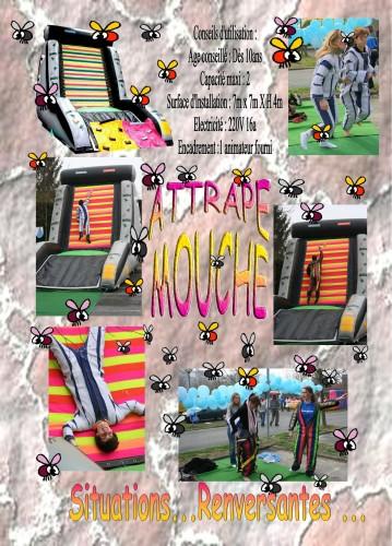 """Attarape mouche ou """"Scratch"""""""