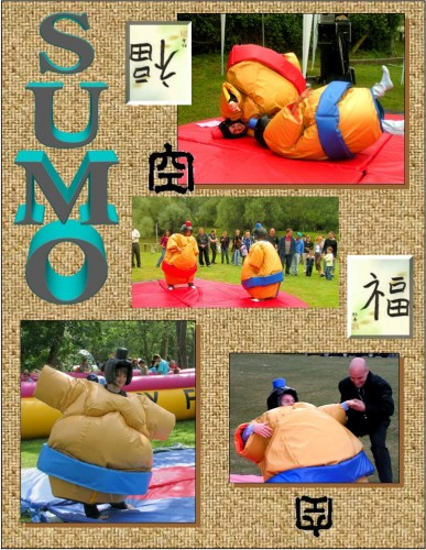 Location de sumo pour mariage, anniversaire et fête familiale