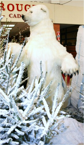 Décoration magasin Automate décors de Noël